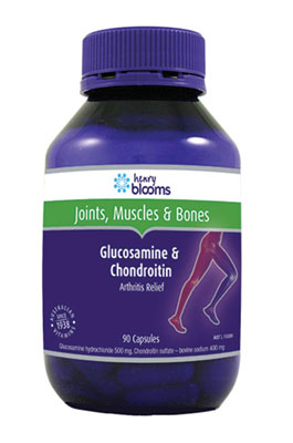Thumbnail for Henry Blooms Glucosamine & Chondroitin Capsules x 90